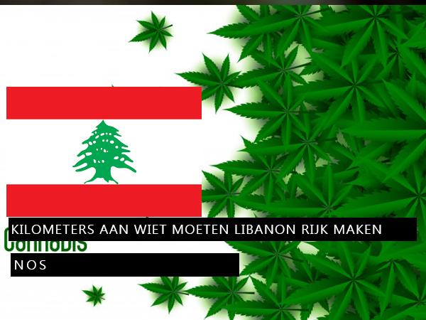 Kilometers aan WIET moeten Libanon rijk maken